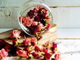 روش خوشبو کردن خانه با گیاهان طبیعی