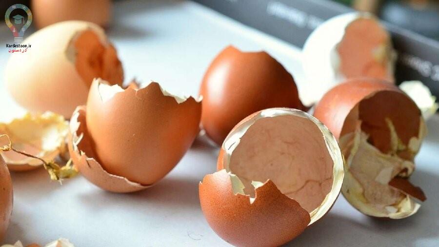 فواید پوست تخم مرغ که تا حالا نمی دانستید!