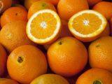 همه چیز درباره خواص پوست پرتغال که باید بدانید