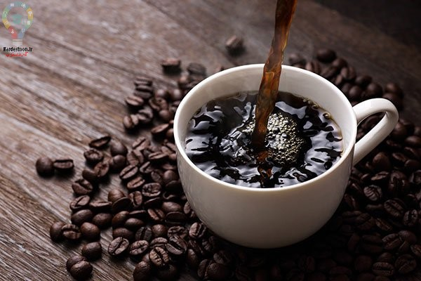 طریقه کاشت بذر قهوه در خانه   کاشت در گلدان و باغ